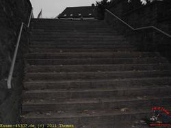 Treppe neu 2011_6